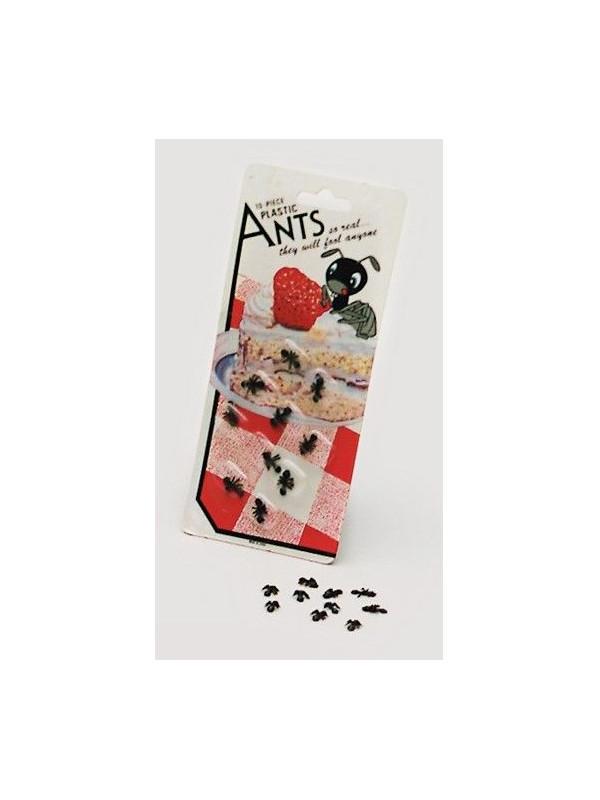 Blister hormigas