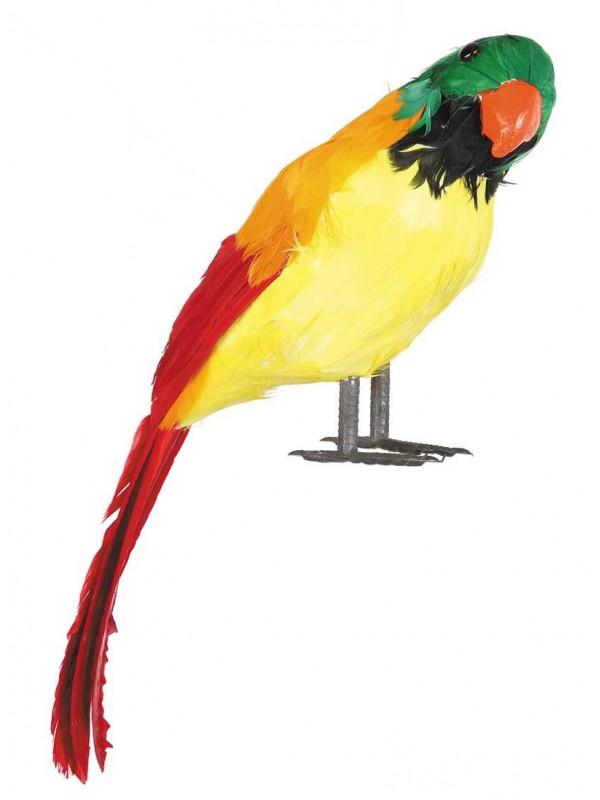 Loro de plumas