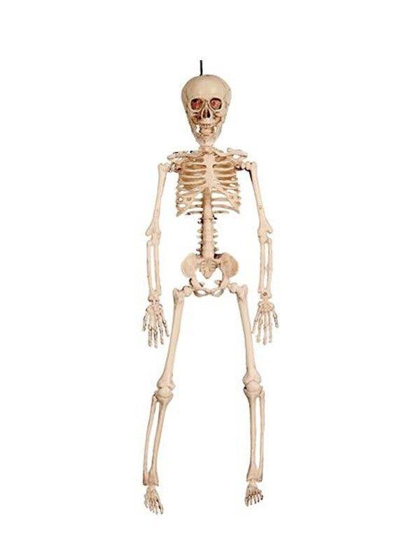 Esqueleto con luz