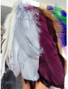Fleco pluma oca