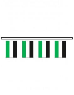 Bandera plástico Extremadura