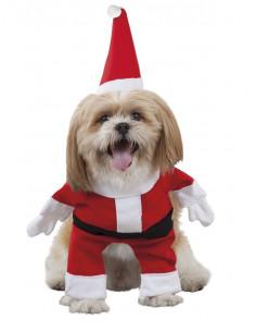 Disfraz de Papá Noel para perro