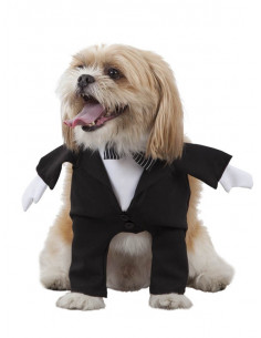 Disfraz de novio para perro