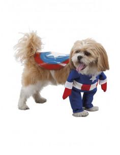 Disfraz de super heroe para perro