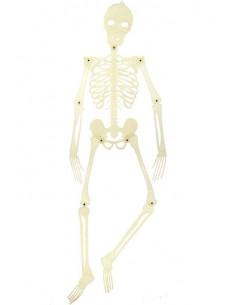 Esqueleto que brilla 150cm